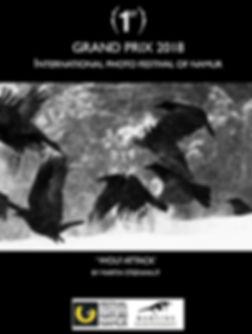 Martin-Steenhaut-GRAND-PRIX-FINN18-Wolf-