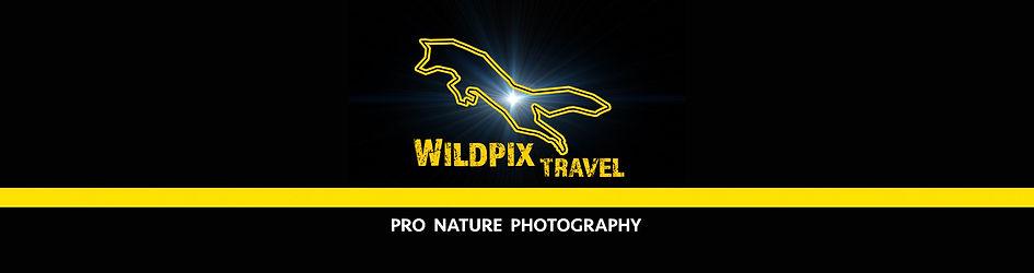 WP banner 2021.jpg