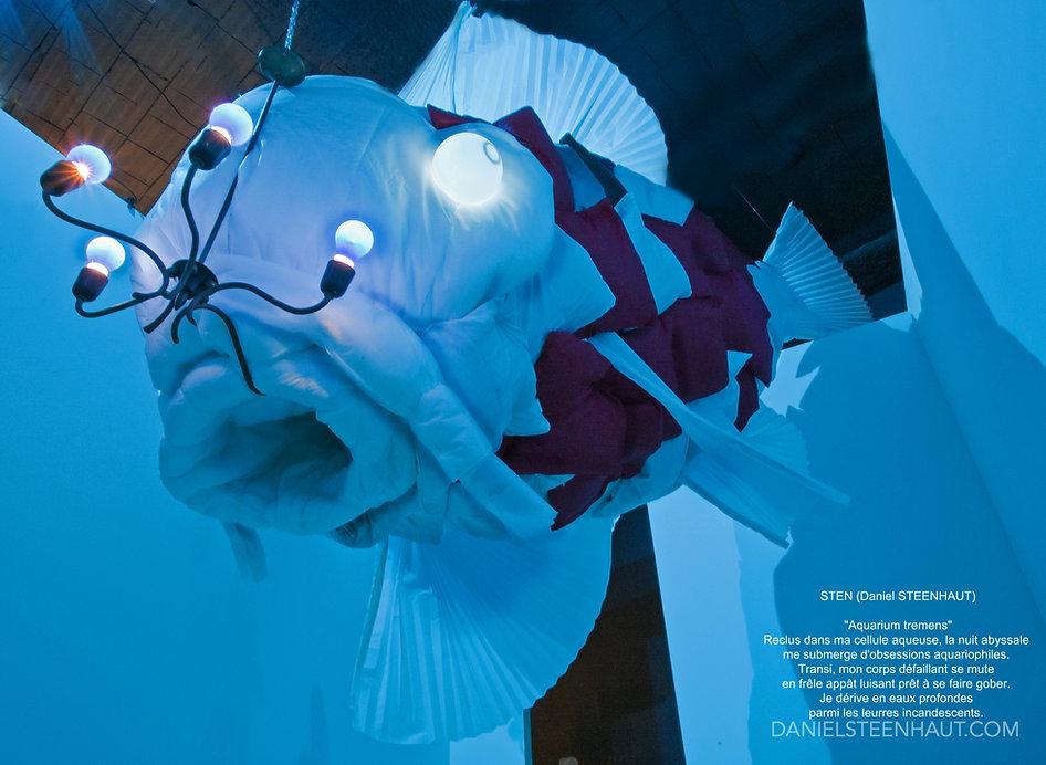 Aquarium tremens.JPG