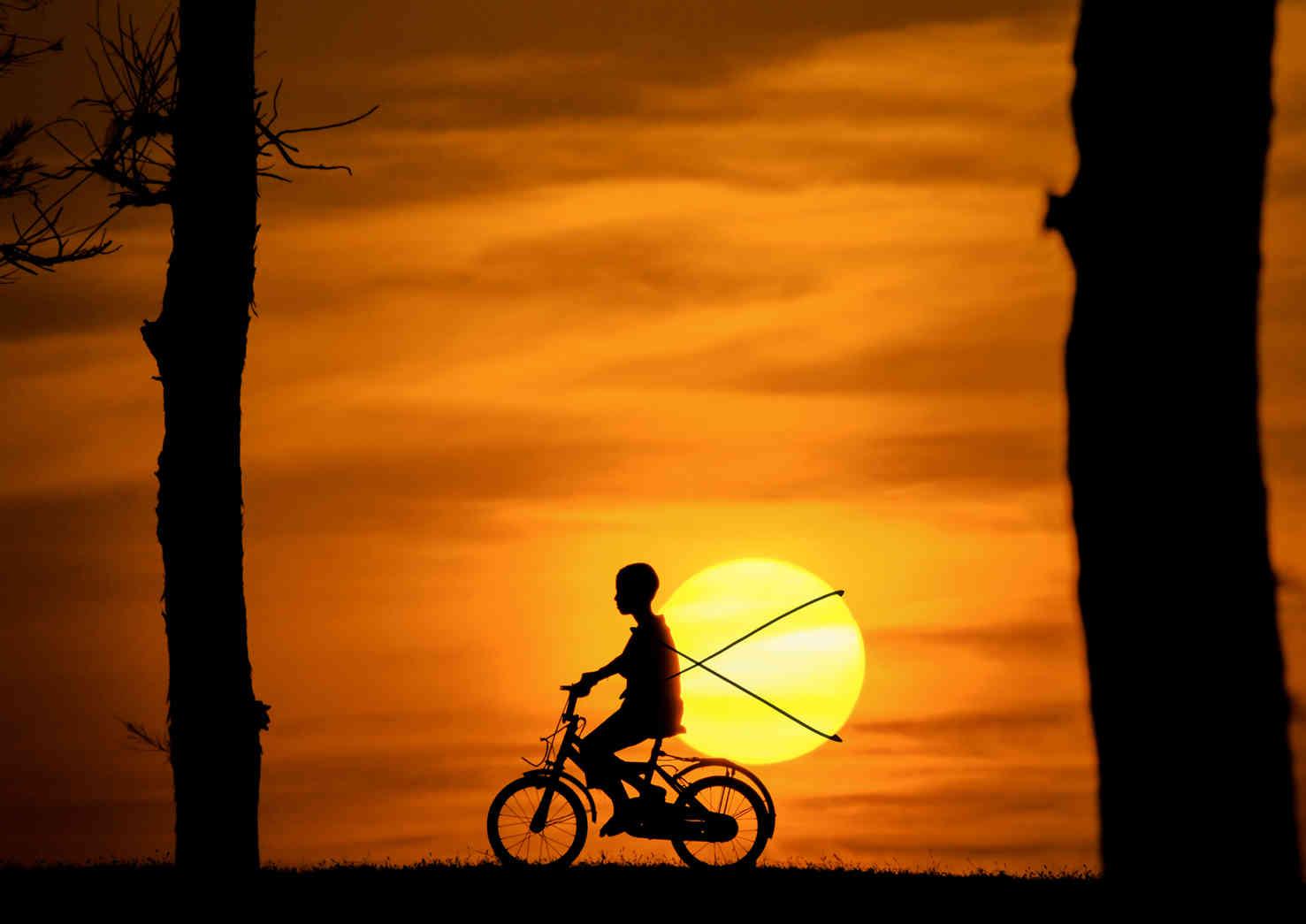 Sun Carrier