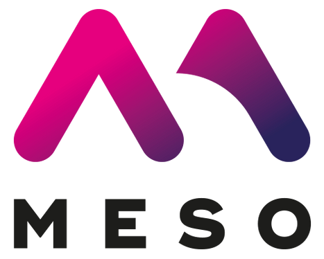 Project Meso Logo.png