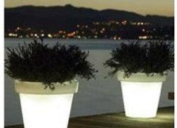Verlichte Plantenbak/Koeler van BLOOM!
