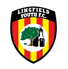 lingfield youth fc_no background.png