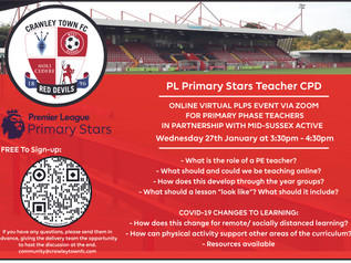 Supporting the Community through our PLPS Virtual Teacher CPD