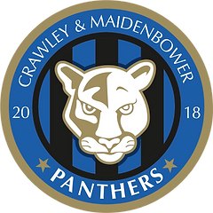 Panthers New Badge.png