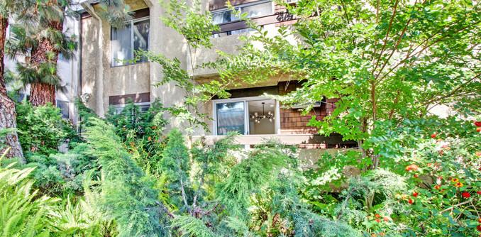 Balcony Next to Lush Greenery