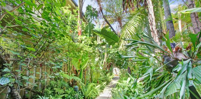 Central Tropical Garden Courtyard