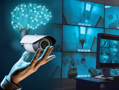 How Do PIs Conduct Surveillance?