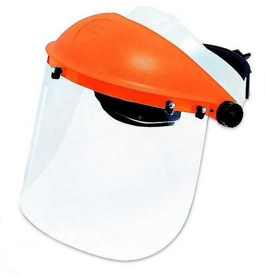 מגן פנים