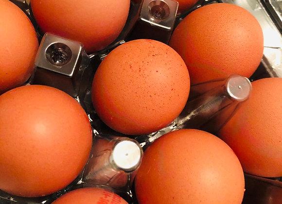 egg鸡蛋/15个