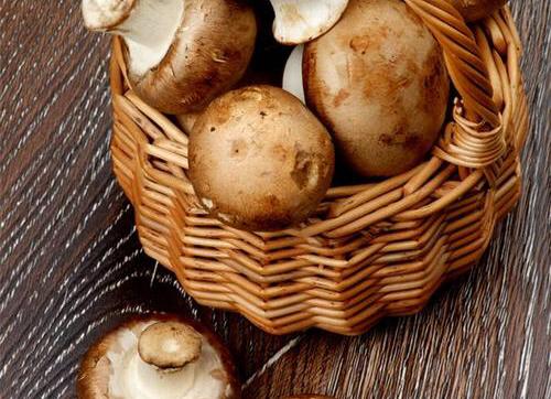The mushroom蘑菇/250g