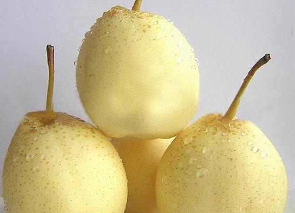 Chinese pear中国梨/2个