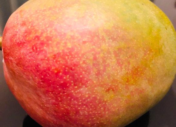Big mango大芒果🥭/个