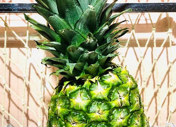 pineapple菠萝