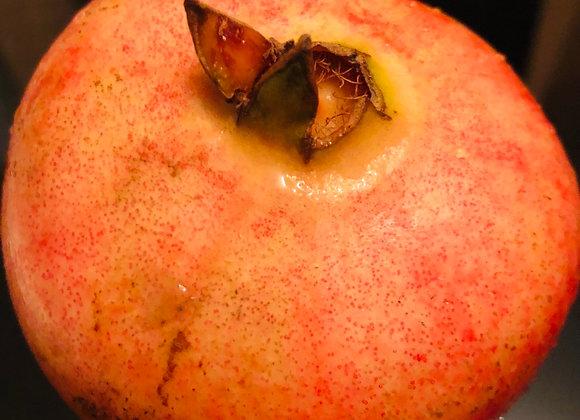 pomegranate石榴/个