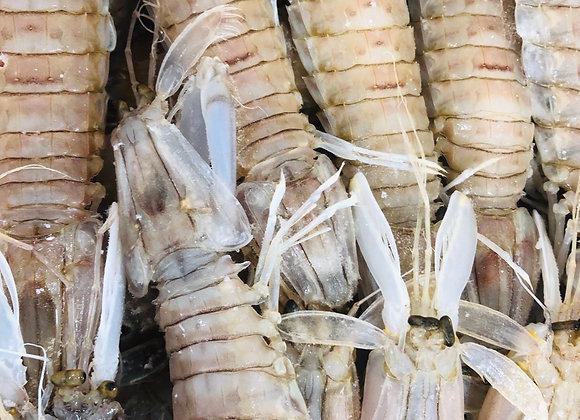 Pipi shrimp皮皮虾/500g现货