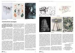 Constructions Sauvages, Espace culturel Assens (2019)
