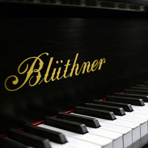 O piano Blüthner