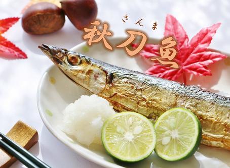 秋の代名詞 ★ 秋刀魚 ★