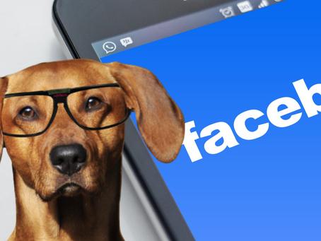 Kodėl Facebook reklama neveikia?