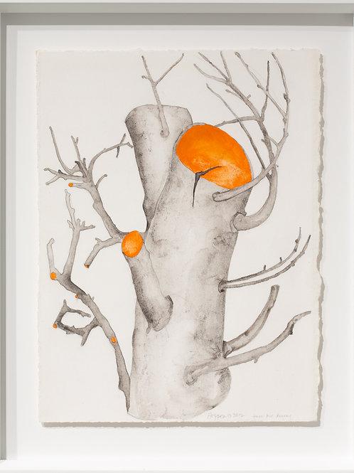 """Carol Hepper """"Orange Slices #1212"""""""