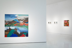 Paint Shape Form, Installation View 4
