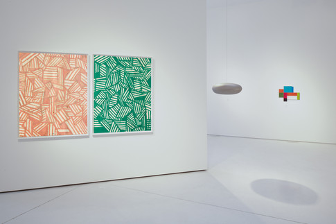 Paint Shape Form, Installation View 2