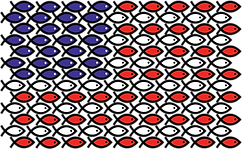 fish-flag.png