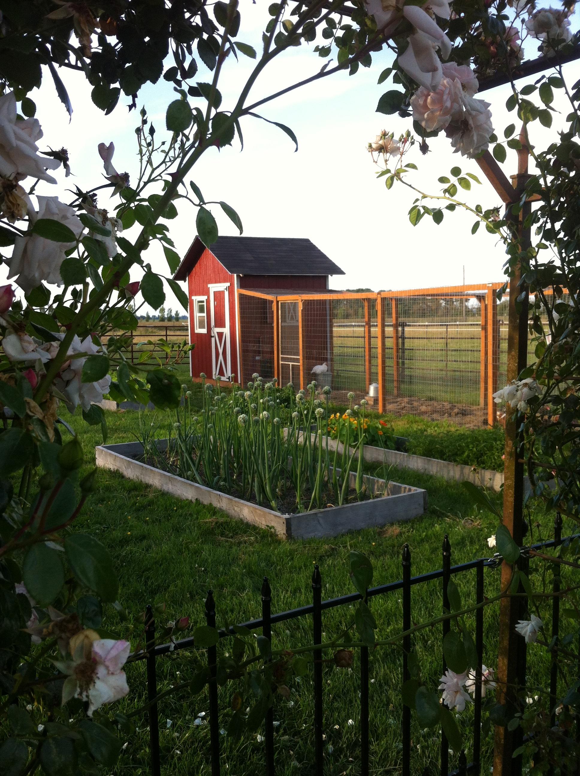 Vegetable Garden and Chicken Coop