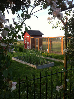 Vegetable Garden and Chicken Coop