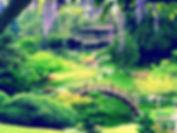 Озеленение москва и московская область, стрижка газона, посев газона, мощение, ваш садовник, сад