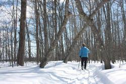 this trail runs along the lake