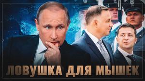 О стратегии Путина: Ловушка для мышек.