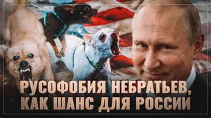 Русофобия прибалтийских, украинских и других небратьев, как шанс для России.