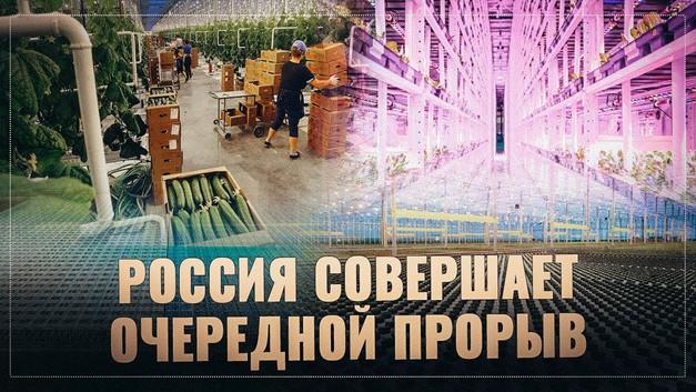 Тепличный бум: Россия совершает очередной прорыв.