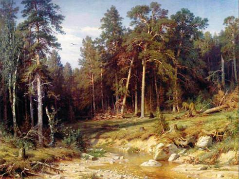 Сосновый бор. Мачтовый лес в Вятской губернии.