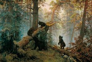 Jutro u borovoj šumi.