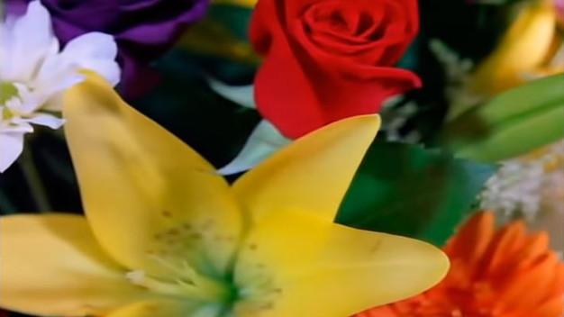 """""""Щелкунчик"""", Вальс цветов."""