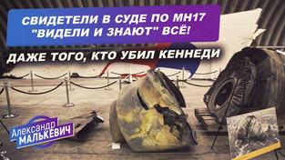 """Свидетели в суде по MH17 """"видели и знают"""" ВСЁ! Даже того, кто убил Кеннеди (Александр Малькевич)"""