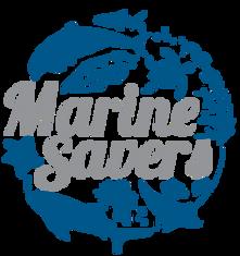 MS-logo-trans-200x213-min.png