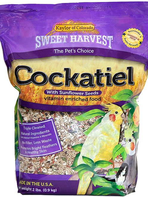Sweet Harvest Cockatiel With Sunflower Seeds