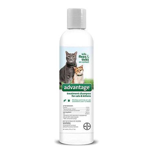 Bayer Advantage Treatment Shampoo for Cats & Kittens