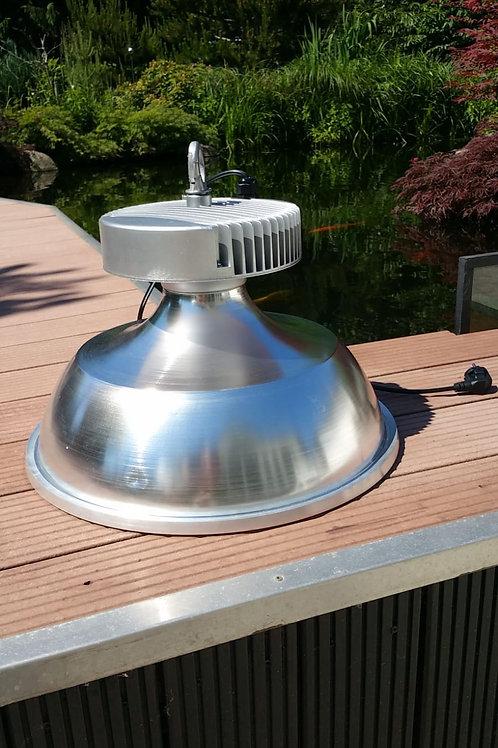 Induction Licht 150 Watt Süsswasser