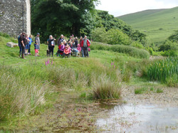 Preparing for pond dipping