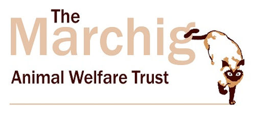 Marchig Logo (High Res).jpg