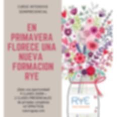 formación_rye_intensiva_semipresencial