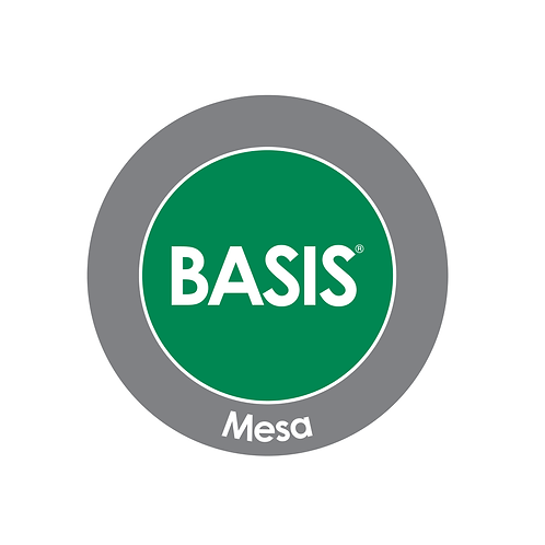BASIS Mesa Car Magnet