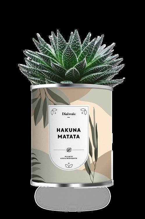 HAKUNA MATATA - NEW