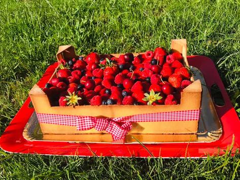 Recette estivale : le gâteau cagette comestible!