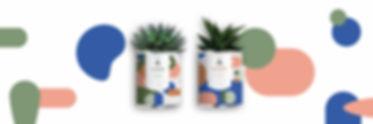 craquegrandes plantes.jpg